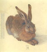 Young Hare I  by Albrecht Durer