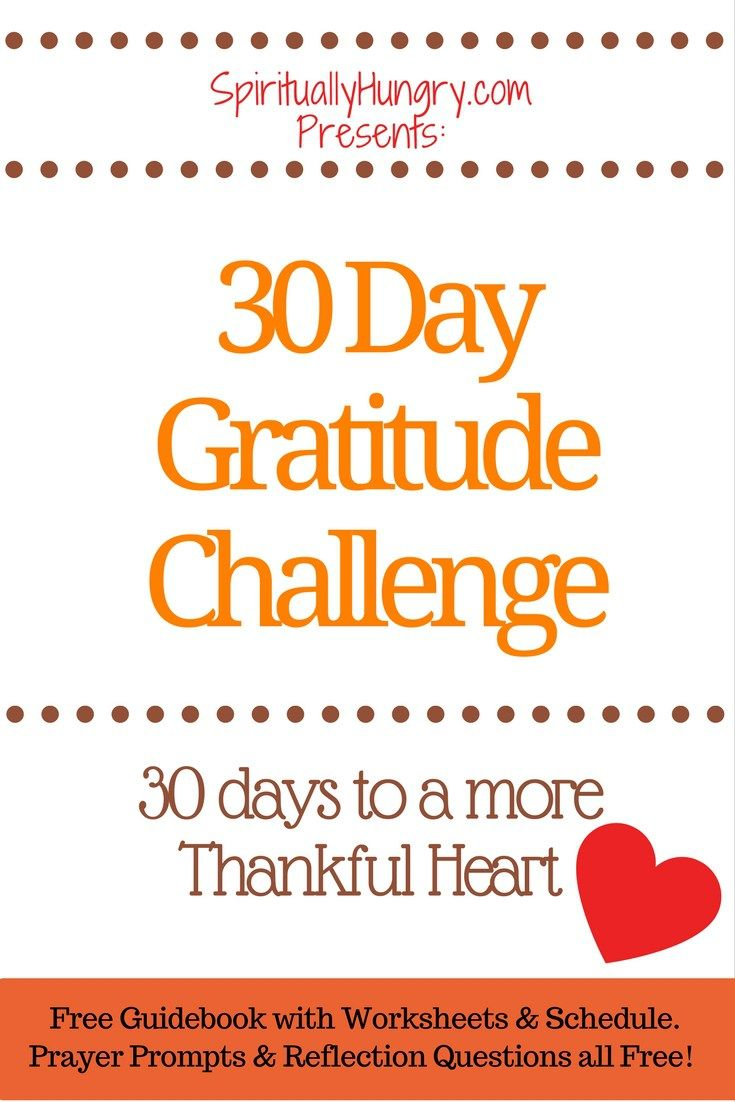 30 Day Gratitude Challenge Gratitude Challenge 30 Day Challenge Gratitude