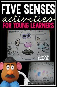Five Senses activities for Kindergarten- love the Potato Head craftivity!