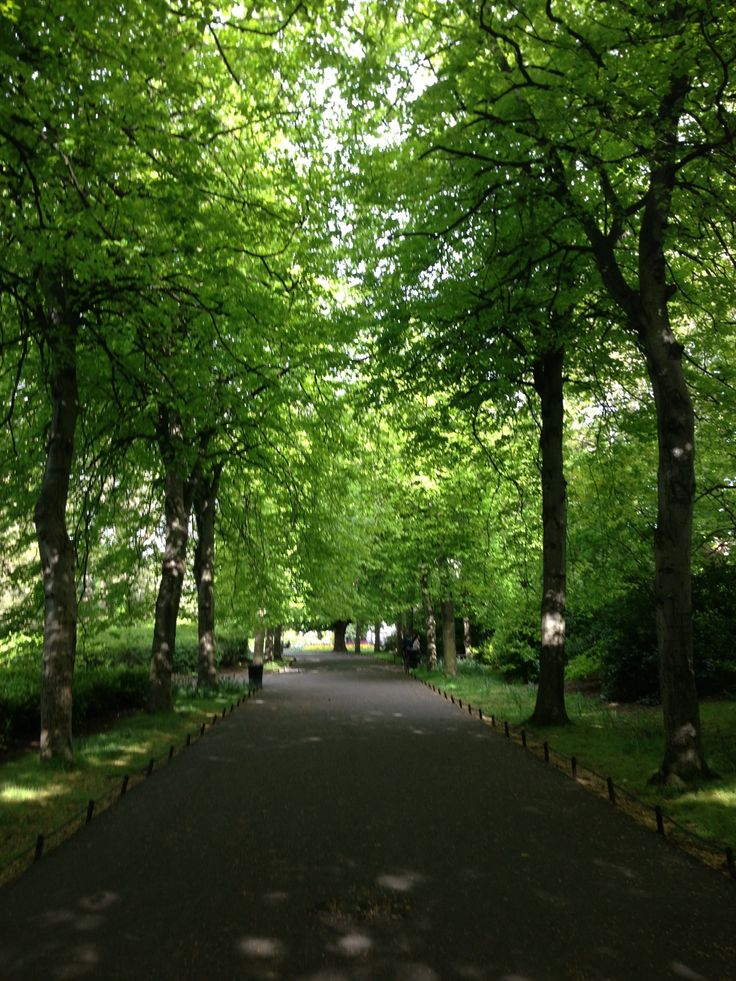 Saint Stephen's Green in Dublin