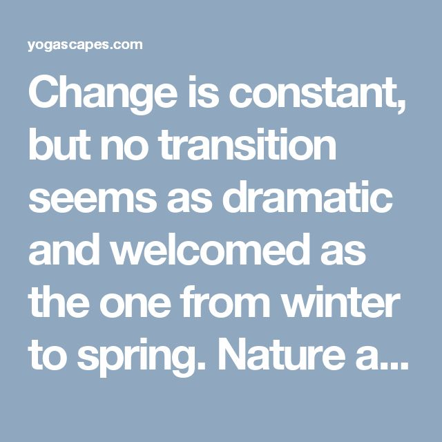 Change is constant, but no transition seems as dramatic and welcomed as the one from winter to spring. Nature and humanity unite in the process waking up and stepping out [...]