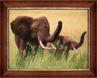 Купить Рисунок на ткани для вышивки бисером Индийский слон : цена, продажа - Вышивка Бисером