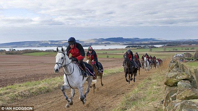 Silver By Nature, trained by Lucinda Russell, on the gallops near Kinross. Scotland's great white hope.