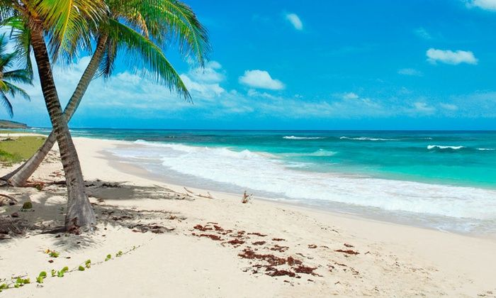 Groupon: From $257 3-, 5-, or 7-Night Stay with Daily Breakfast at Coco La Palm in Negril, Jamaica