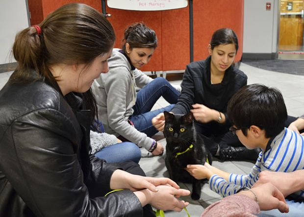 The special connections between humans and animals will be explored at a one-day symposium sponsored by the Virginia-Maryland College of Veterinary Medicine at Virginia Tech. The event will take place Friday, March 6, from 8 a.m. to 5 p.m. at The Inn at Virginia Tech and Skelton Conference Center.