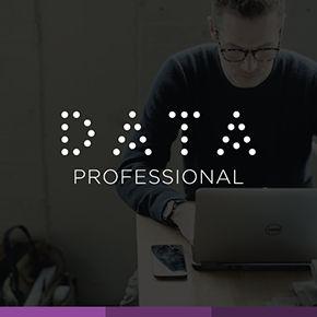 Data professional