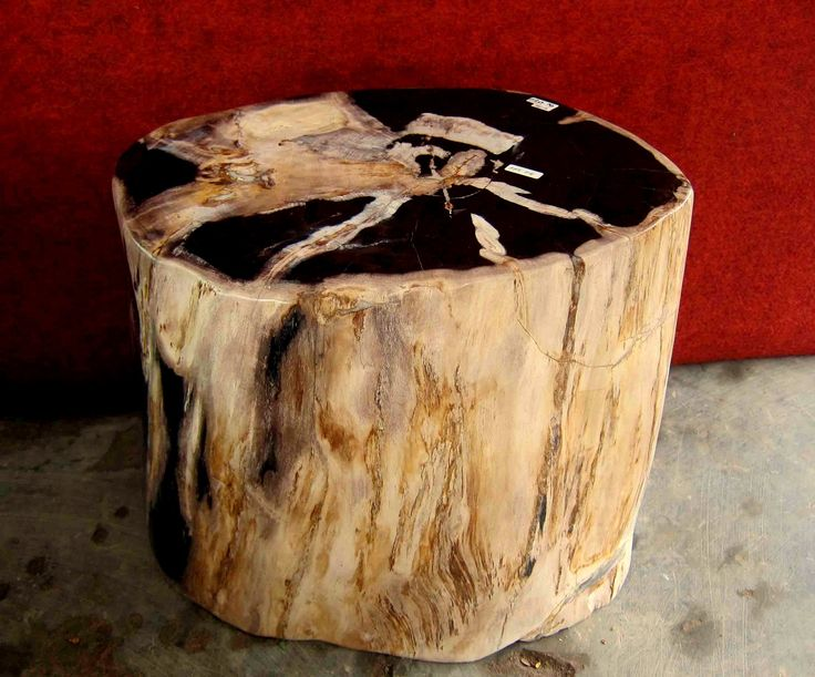 Petrified Wood Stump table made from genuine fossil wood.