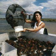 How to Raise Crawfish for Profit | eHow
