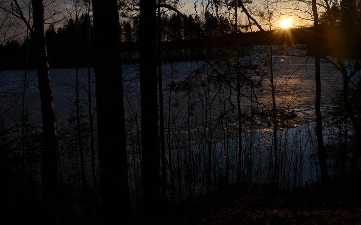Huhtikuun ilta Harjujärvellä Leivonmäen kansallispuistossa.