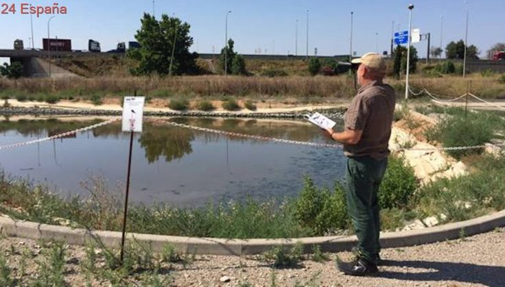 Hidraqua lanza un programa de voluntariado para la observación y análisis de aves en las depuradoras