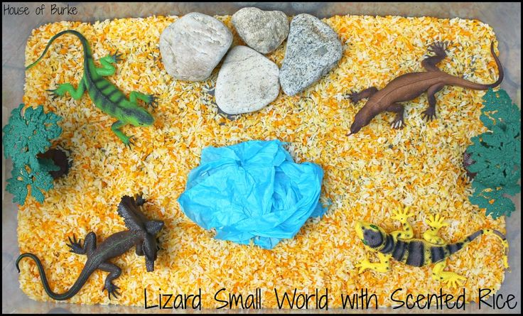 Lizard Small World with Scented Rice - House of Burke
