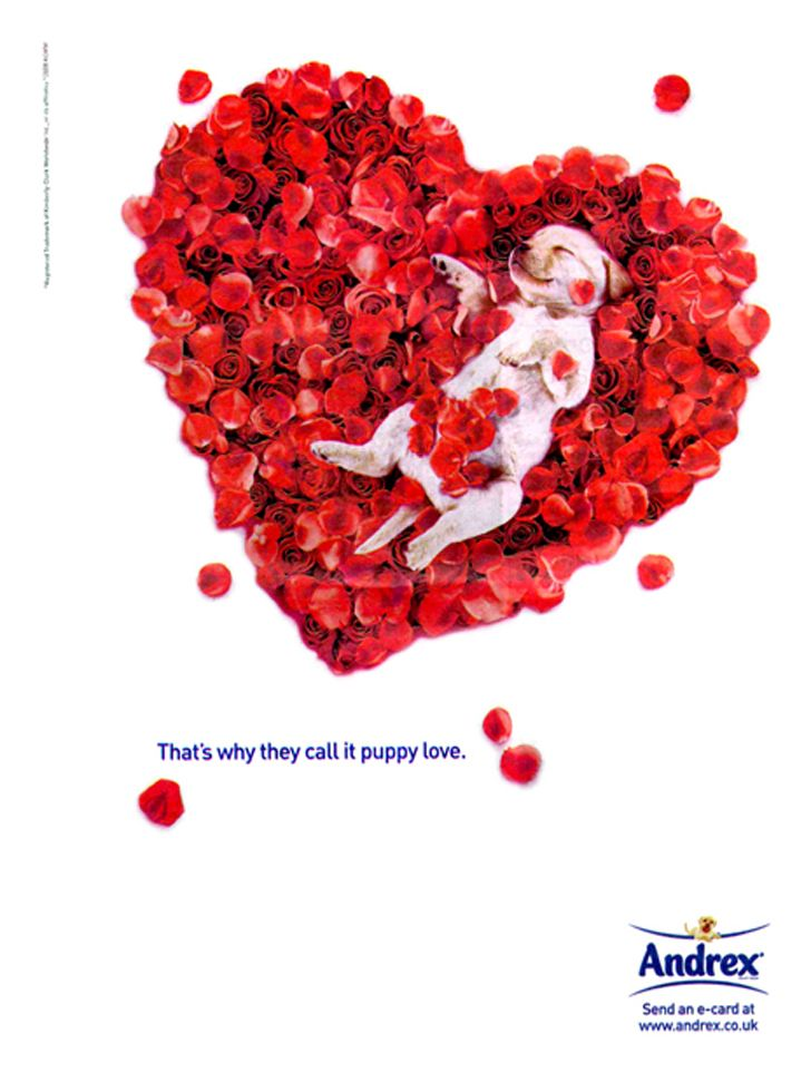 50 Most Creative Valentine S Day Advertisements 1 Design Per Day