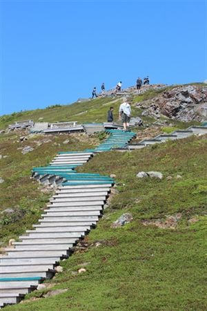 This is the climb back up the stairs on the Skyline trail. You'll experience the Cabot Trail in a unique way on this hike. Visit Cape Breton & Nova Scotia
