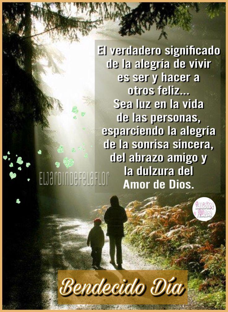 El verdadero significado de la alegría de vivir es ser y hacer a otros feliz... Sea luz en la vida de las personas, esparciendo la alegría de la sonrisa sincera, del abrazo amigo y la dulzura del Amor de Dios.