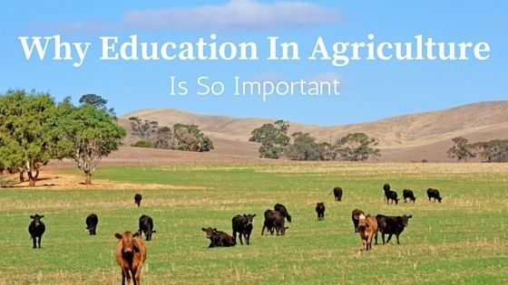 Not all Australian's are blessed with the privilege of growing up on a farm. The skills and knowledge that you pick up become second nature. Country kids get to learn hands-on skills like how to properly care for a range of animals. They also learn first-hand the work that goes into preparing, growing and harvesting the crops that produce the food on our plates.