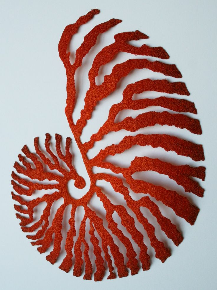 Meredith Woolnough, Red NautilusPembroidery thread, pins on fabriano paper