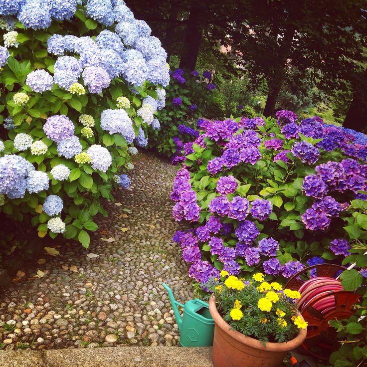 Miasino in Piemonte, Villa Allegra http://www.villaallegra.it