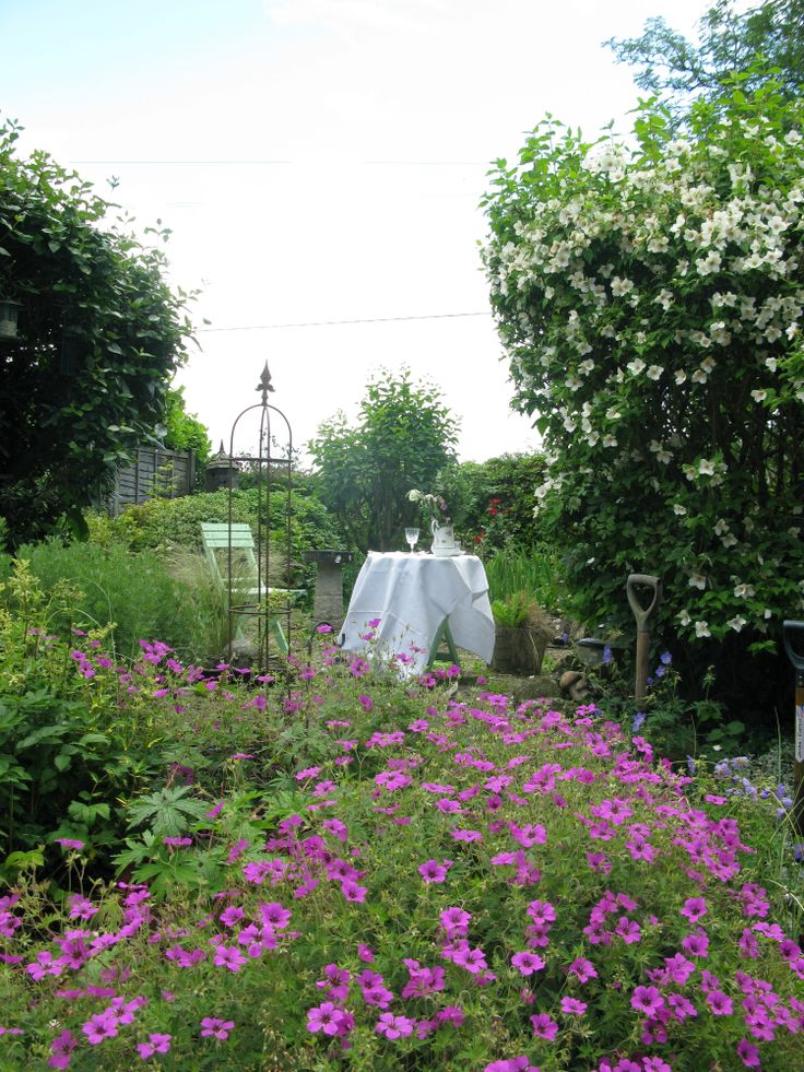 Using the English cottage garden for inspiration