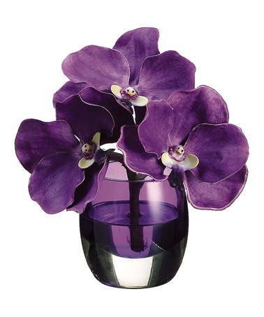 Take a look at this mauve vanda orchid vase arrangement by for Allstate floral and craft