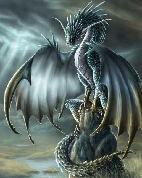 27 best dragon images on Pinterest | Fantasy art, Fantasy ...