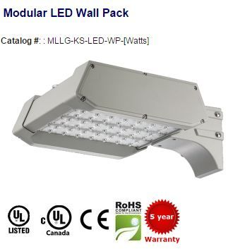 #LED #WallPack replaces up to 750W HID. 2640-26180 #lumens. 100,000 (L70) hours with 5 years #limitedwarranty. IP67 Rated. For more #leddesigns, please visit http://myledlightingguide.com/LED_Wall_Pack-list.aspx   #ledlightimages