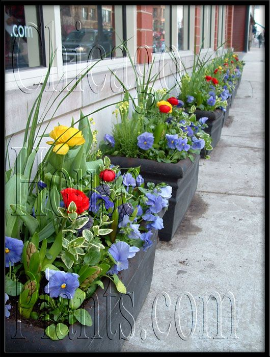 17 best images about best patio ideas on pinterest for Spring garden ideas