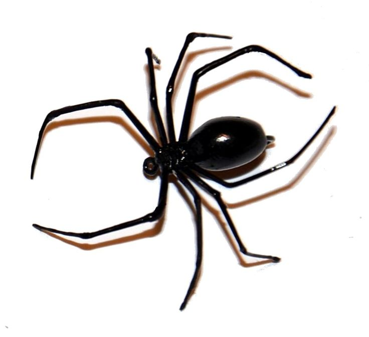 Realistic Black Widow Spider Fly Step By Instructions And Hints For Body