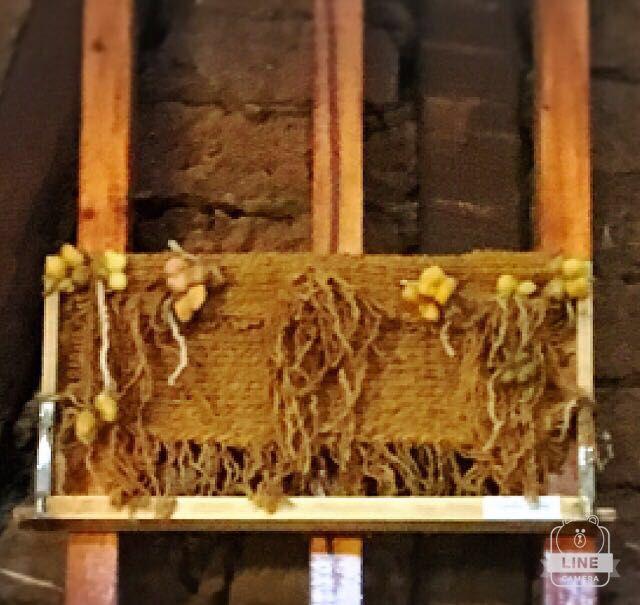 Panal de abeja con telar María. CLP 20.000 Tilonka Lanas
