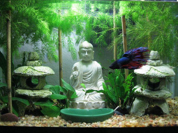 17 best ideas about vase fish tank on pinterest betta for Betta fish tank decorations