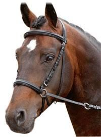 17 Best Images About Bitless Bridle Etc On Pinterest