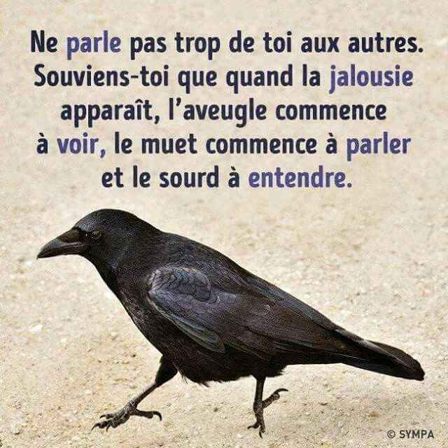 Ne parle pas trop de toi aux autres. Souviens-toi que quand la jalousie apparaît, l'aveugle commence à voir, le muet commence à parler et le sourd commence à entendre. / Do not talk too much about yourself to others. Remember that when jealousy appears, the blind begins to see, the mute begins to speak and the deaf begins to hear.