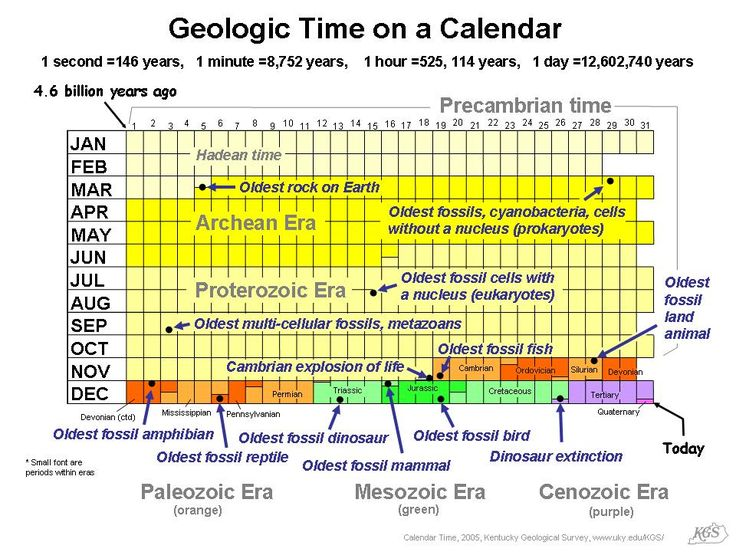 geologic time scale coloring pages - photo#24