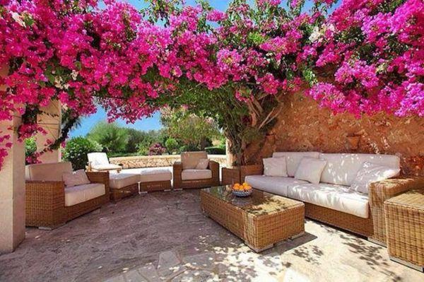 rosa pflanzen im garten gemütliche sitzecke rattan möbel