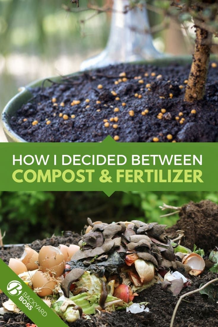 Compost Vs Manure The Best For Your Soil Health Compost