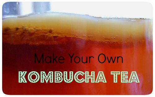 Kombucha Tea – the Perfect Soda Replacement!