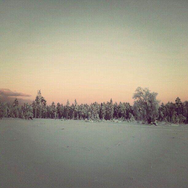 Enåberg, Orsa, Dalarna, Sweden. J Karner 2012.
