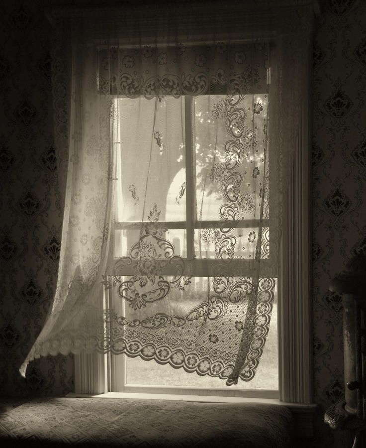 'The morning breezes have secrets to tell; don't go back to sleep'. Rumi (ph. Lyle Huisken)