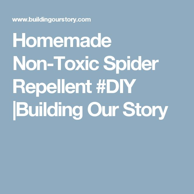 Homemade Non-Toxic Spider Repellent #DIY |Building Our Story