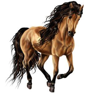 Fabiow, Pferd Mustang Falbe #6496270 - Howrse
