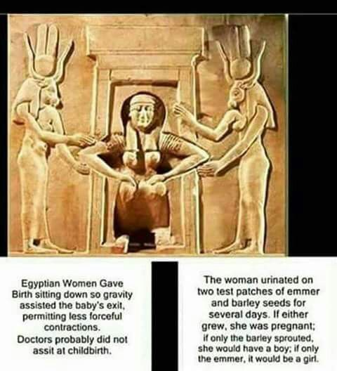 Egyptian birth.
