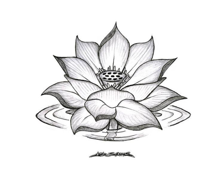 Risultato della ricerca immagini di Google per http://fc09.deviantart.net/fs70/i/2010/102/a/b/Lotus_Flower_by_MuddyGreen.jpg