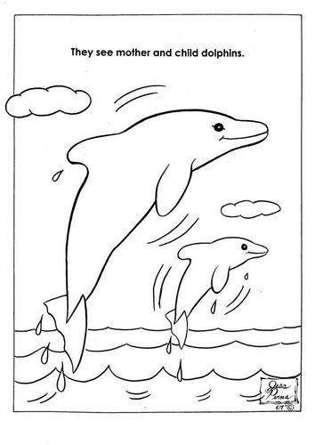 malvorlage naturpark delphine  ausmalbild 7944