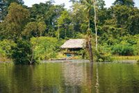Cabaña de acopio en las riberas del río Loreto Yacú.