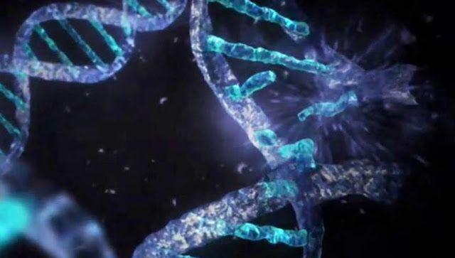 Πυρφόρος Έλλην: Αυτά που μας Κρύβουν για το Ανθρώπινο DNA