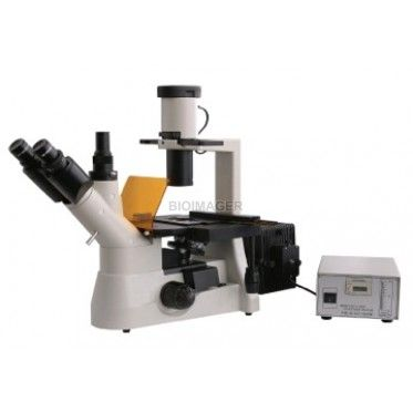 BIM550FL inverted fluorescence microscope is composed of inverted microscope and Epi-fluorescent microscope. The inverted microscope has the feature to observe the specimen in Culture flask and Petri dish. Epi-fluorescent device applies to the fluorescent microscopy. It is equipped with long wording distance plan achromatic objectives, wide field eyepiece, binocular observation head, phase contrast kit and phase contrast objectives. The transparent alive objects can be observed without…