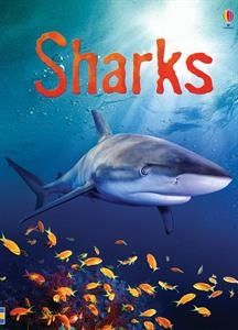 "Let's discover more fun facts about sharks in ""Sharks""  Does your child ever wonder what do sharks like to eat? Maybe they are curious about which shark glows in the dark or maybe even wonder why some sharks never stop swimming? You can help your child find out the answers to these burning questions and a lot more fun facts in this shark-infested book.  #Sharkweek2017 #sharkweek #sharks #UBAM #usbornebooksandmore #discovertheworldinlisasbooknook"