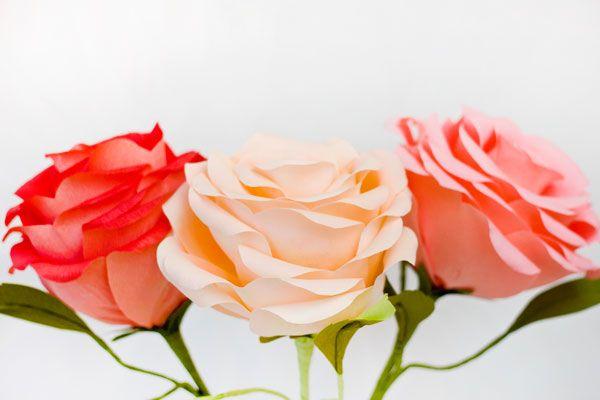 DIY Гигантские Креп бумаги Розы