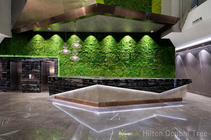 Hotel Hilton Istambuł, zielona ściana z mchu stabilizowanego.
