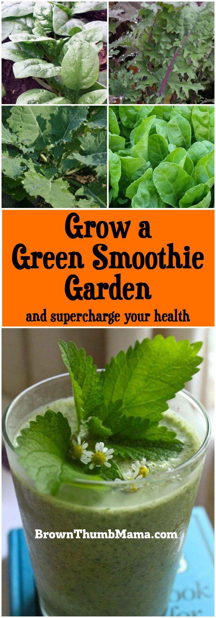 Grow A Green Smoothie Garden