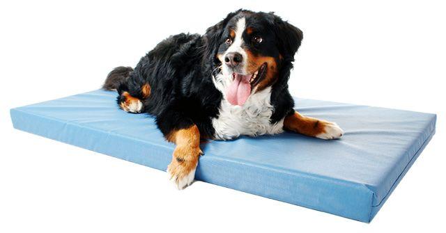 Hundematte DoggyBed Basic Style, blaugrau, 100 cm - 160 cm